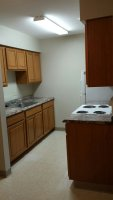 209 Kitchen 1-16-17.jpg